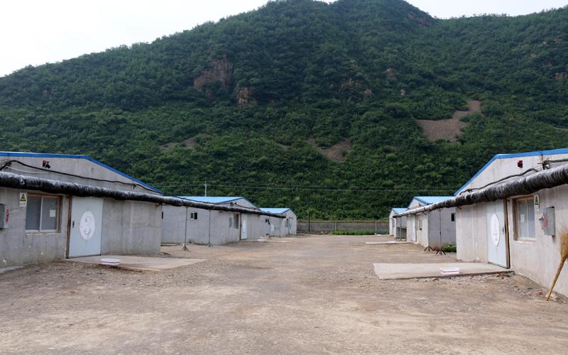 青翠的山峦,净净的场区,在延续着他们的故事呢。